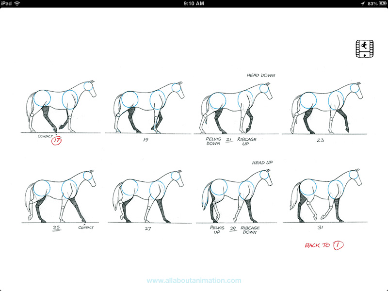 Richard Williams - The Animator's Survival Kit iPad App - Walk Cycle - Onion Skinning